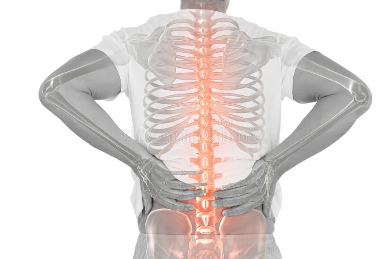 Composto di Digital della spina dorsale Highlighted dell'uomo con dolore alla schiena fotografie stock libere da diritti
