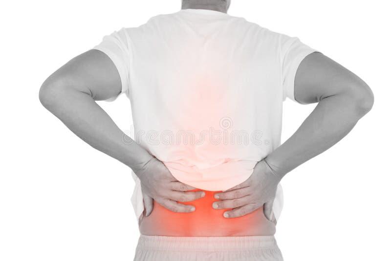 Composto di Digital della spina dorsale Highlighted dell'uomo con dolore alla schiena fotografia stock libera da diritti