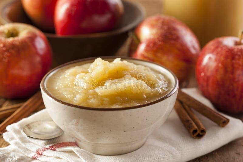 Compota de maçã orgânica saudável com canela fotografia de stock