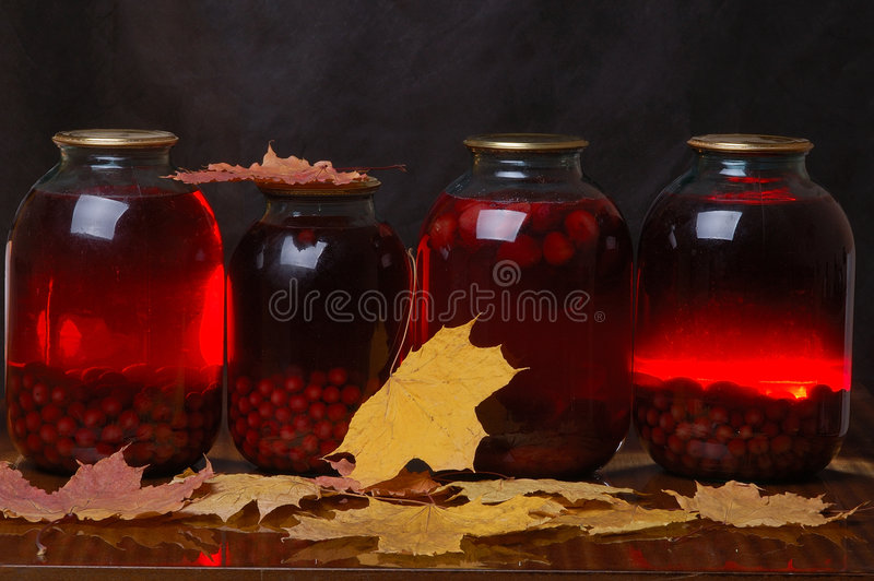 compote μούρων κόκκινο στοκ φωτογραφίες