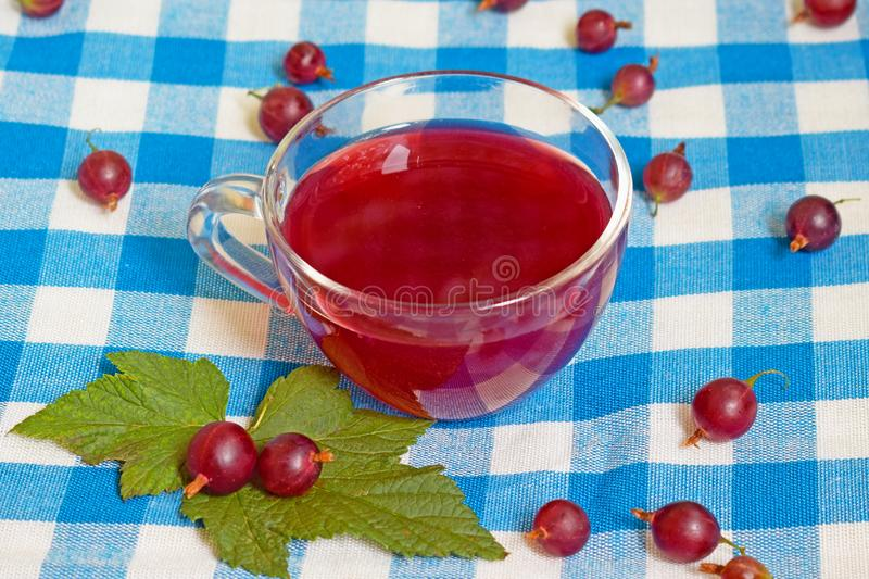 Compote of gooseberry in a transparent cup on a blue background in a cage. stock image