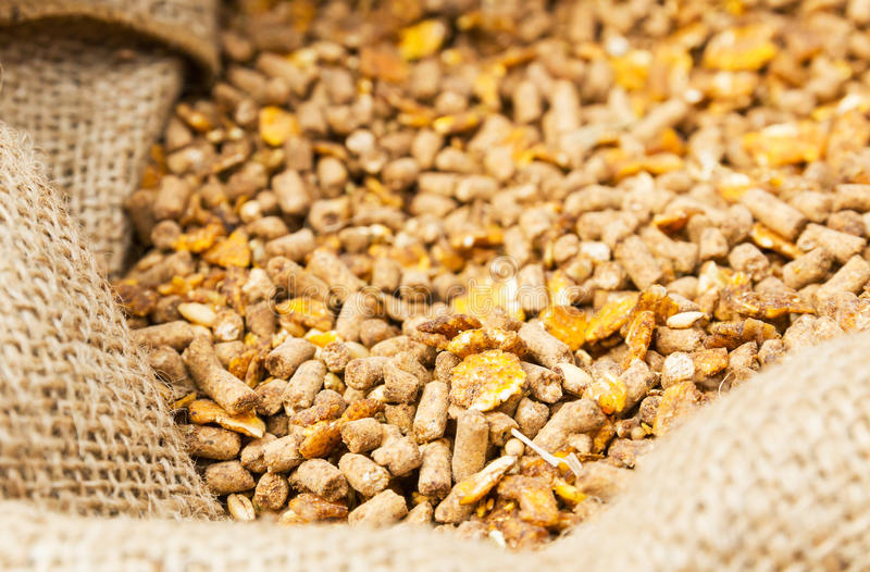 Download Compound Feed  In Sacks Fodder Stock Image - Image: 25271385