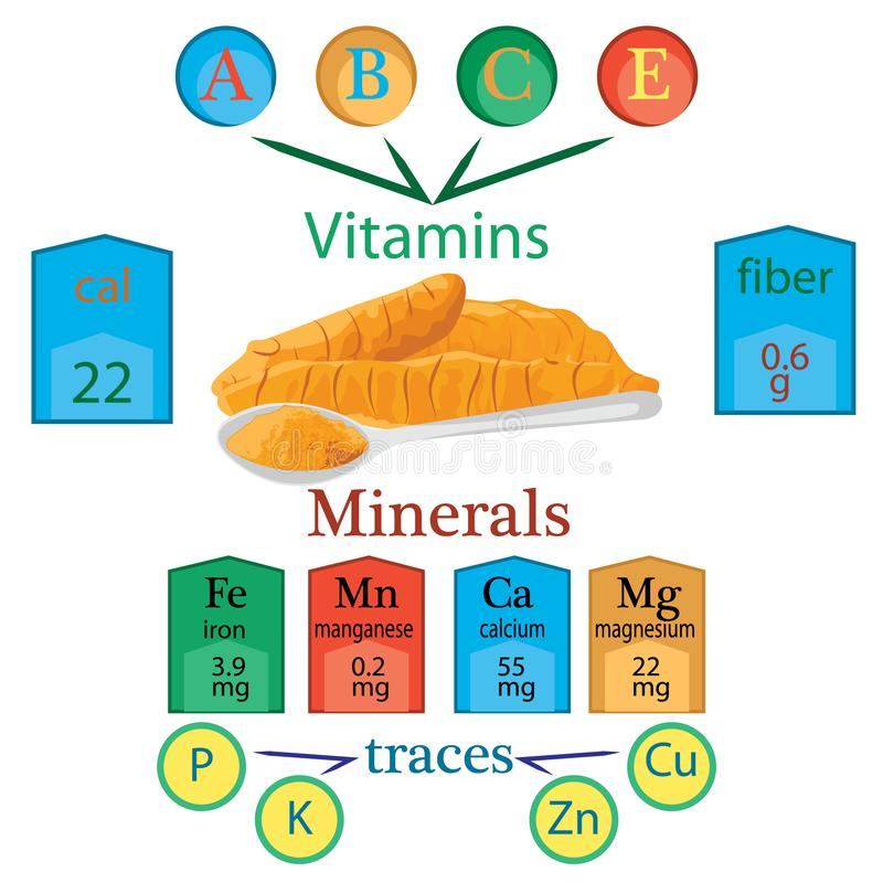 Compound of vitamins and minerals in one spoon of turmeric powder. Vector infographics royalty free illustration