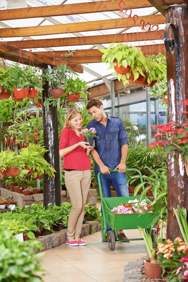 Compra do homem e da mulher no Garden Center imagens de stock royalty free