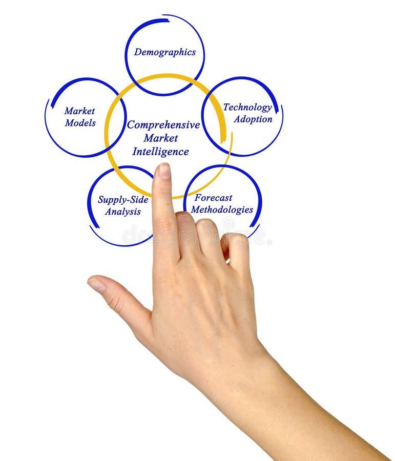 Comprehensive Market Intelligence. Diagram of Comprehensive Market Intelligence royalty free stock image