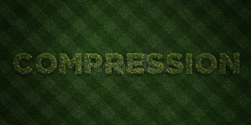COMPRESSIE - verse Grasbrieven met bloemen en paardebloemen - 3D teruggegeven royalty vrij voorraadbeeld vector illustratie