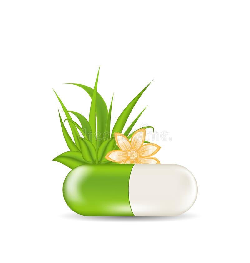 Comprimido médico natural com flor, folhas, grama ilustração do vetor