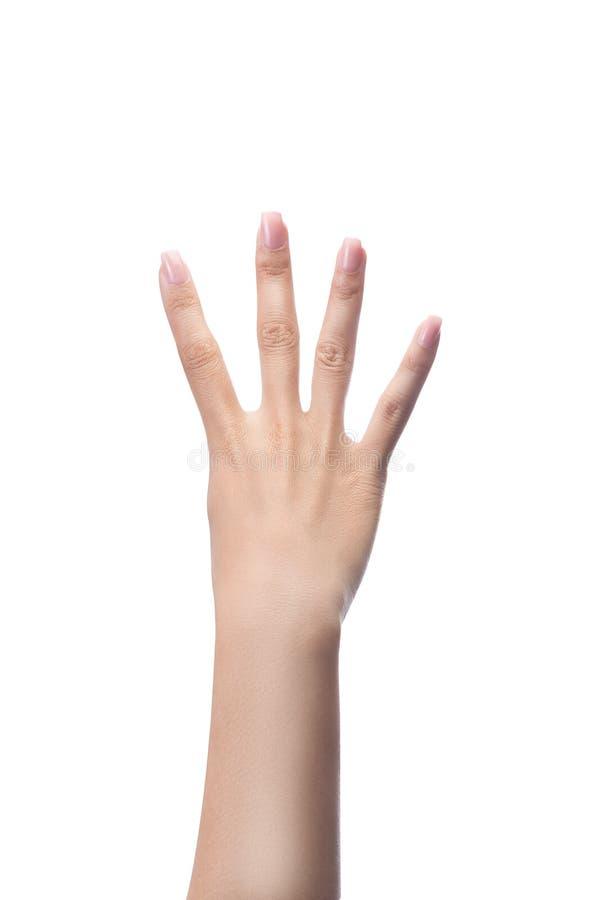 Compte des mains de femme, numéro 4 photographie stock