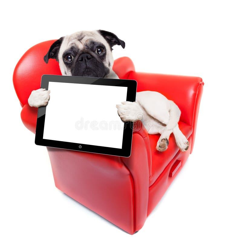 Computador do sofá do cão imagens de stock royalty free