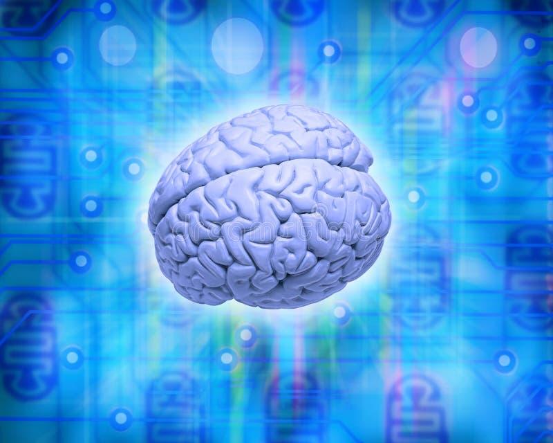 Computer Brain. A human brain on a computer circuit board background
