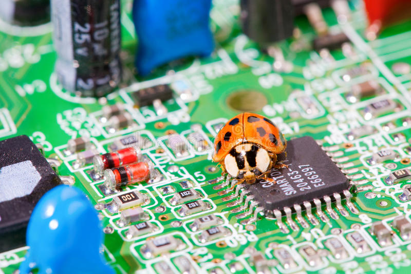 Download Computer bug stock photo. Image of computer, insect, idea - 12242162