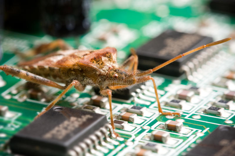 Download Computer Bug stock photo. Image of computer, mother, circuit - 15962158