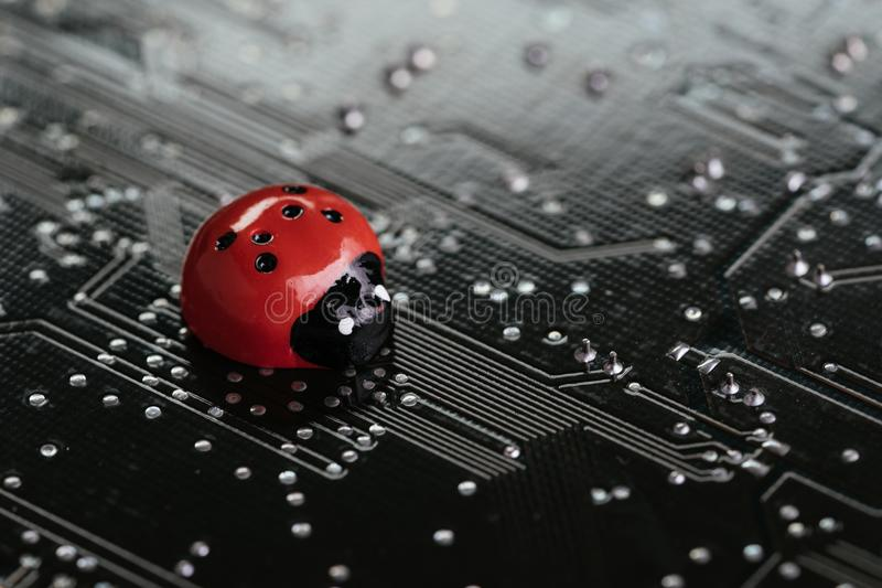 Computer bug, failure or error of software and hardware concept, miniature red ladybug on black computer motherboard PCB with sol. Dering, programmer can debug royalty free stock photo