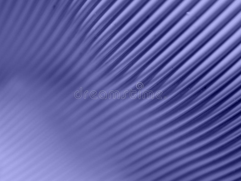 Computer Cable Background 3 stock photo