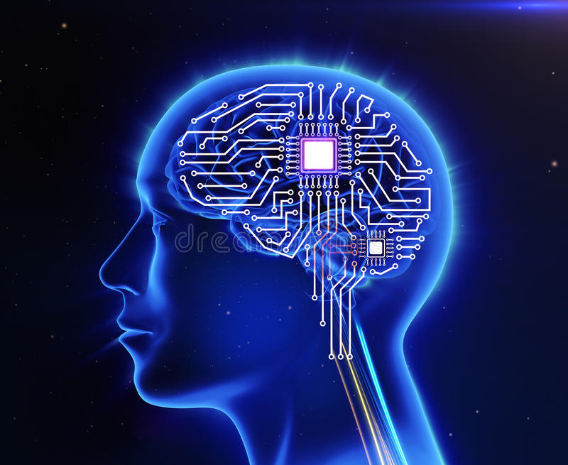 Computer circuit board. In the form of the human brain stock illustration