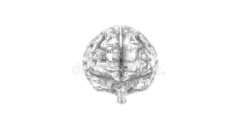 Digital computer brain with circuit texture in B vector illustration