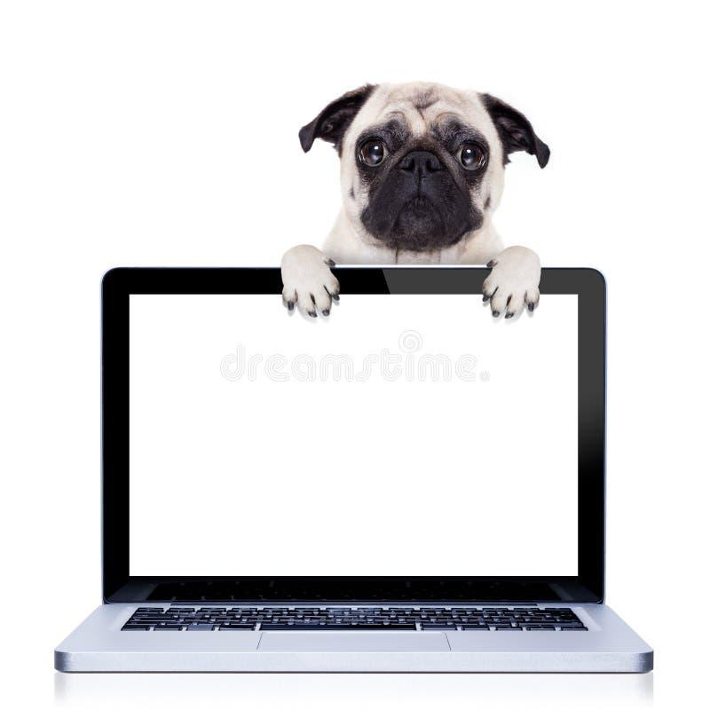 Computer dog royalty free stock photos