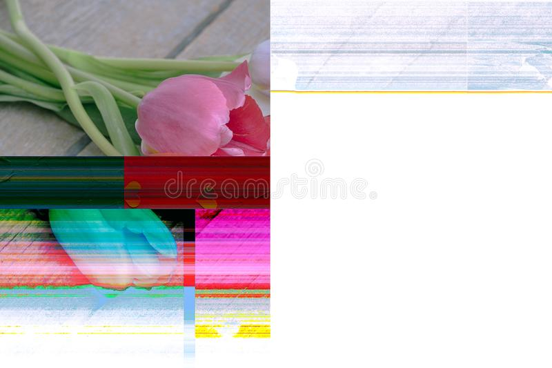 Computer error when editing a photo. Tulips and hearts. Past love. Trendy Glitch effect stock photography
