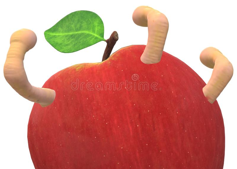 Closeup of a red apple infested with worms against a white backdrop royalty free stock photography