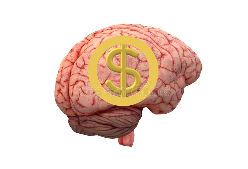 A human brain with a money sign on the foreground stock illustration