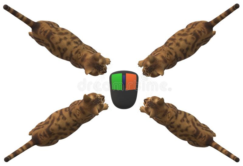 Top down view of four cats cornering a computer mouse from all directions royalty free stock photo