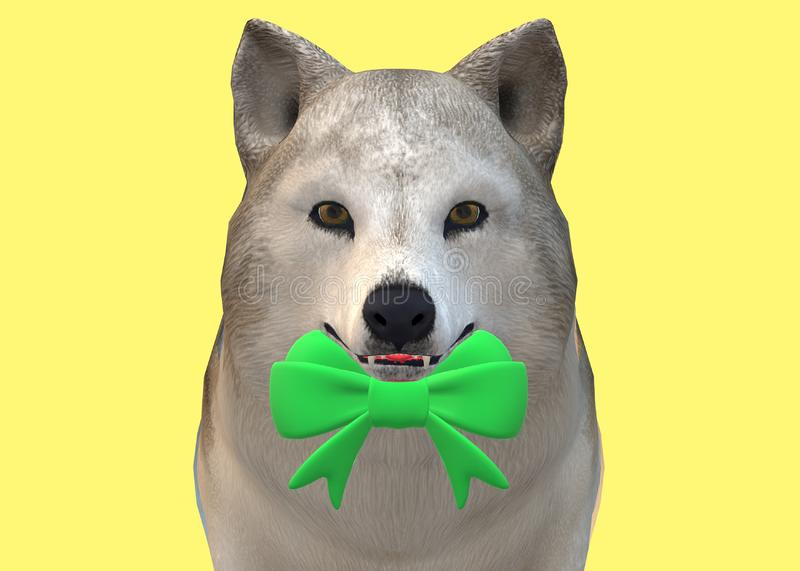 A wolf dog wearing a bright green bow tie stock image