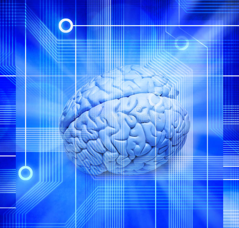 Computer Intelligence Brain Technology Chip Science. A human brain with a computer technology circuit board background
