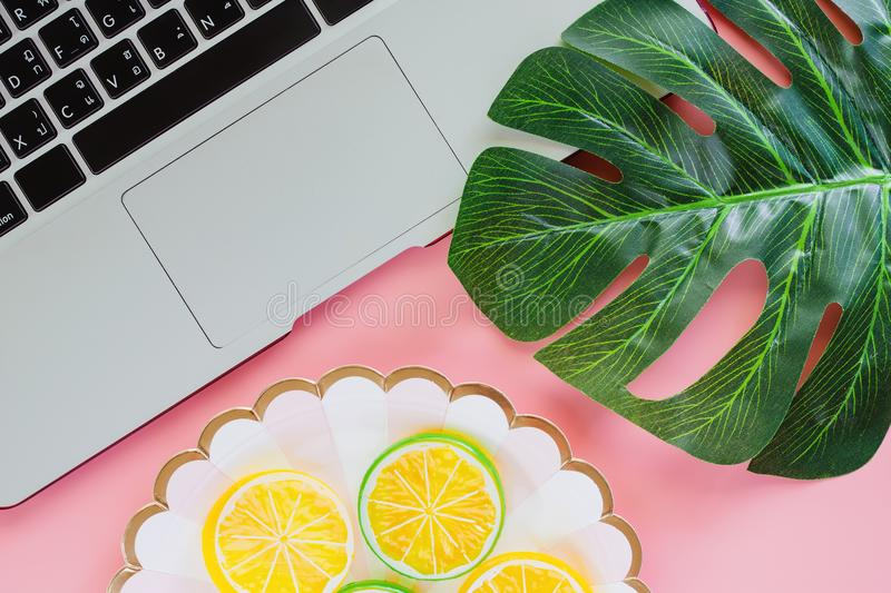 Computer laptop with green leaf palm and lemon slice on pink col. Or background for food planning concept. Flat lay and top view image royalty free stock photo
