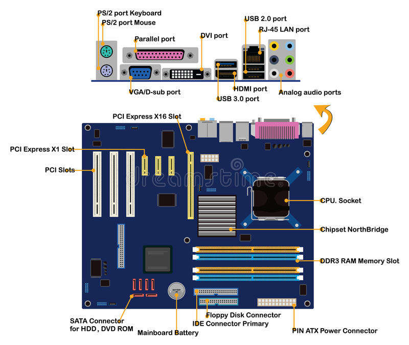 Computer motherboard parts connector ports info. Graphic vector vector illustration