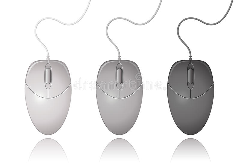 Download Computer Mouse stock vector. Image of part, illustration - 13782867