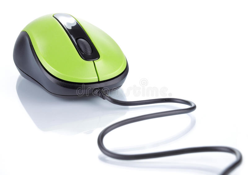 Computer mouse. Isolated on white
