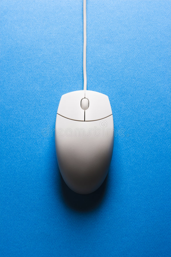 Computer mouse. royalty free stock images