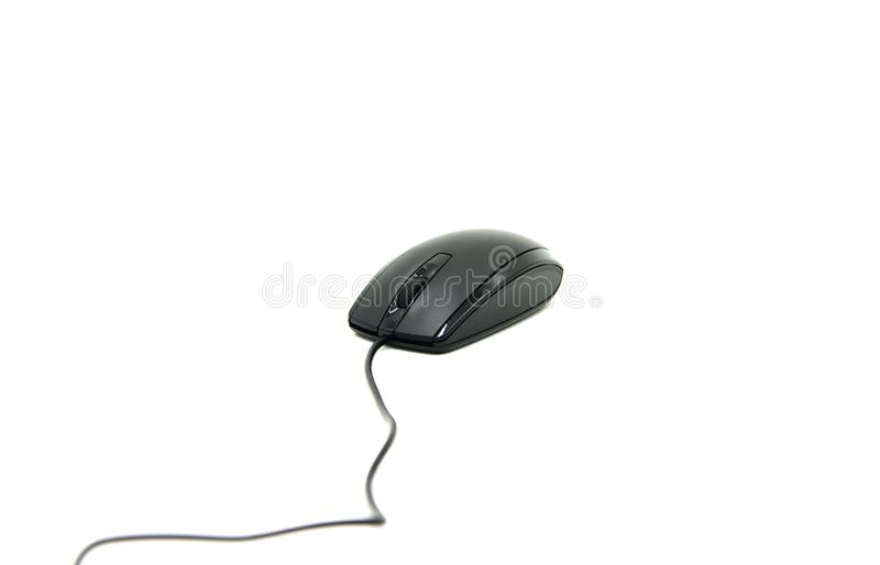 Computer mouse. Electronics, pointer. Computer mouse with white background. Isolated on white computer mouse stock image
