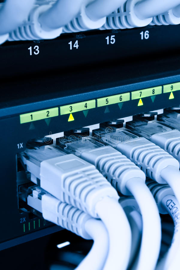 Download Computer network cables stock image. Image of plugs, cat5 - 10629003