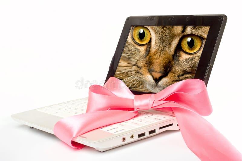 Computer portatile con il nastro dentellare immagini stock
