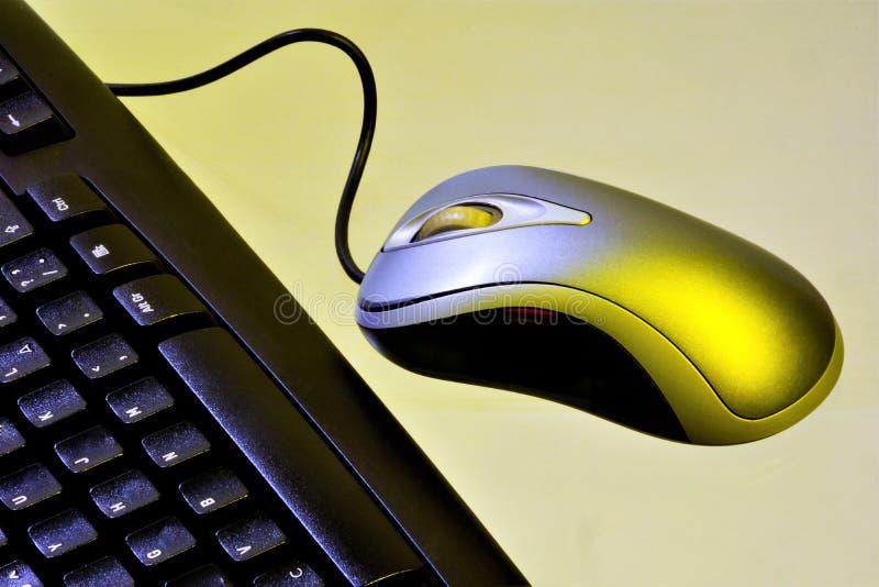 Computertoetsenbord en getelegrafeerde muis om informatie in te gaan Bureau met de noodzakelijke toebehoren - computertoetsenbord stock foto