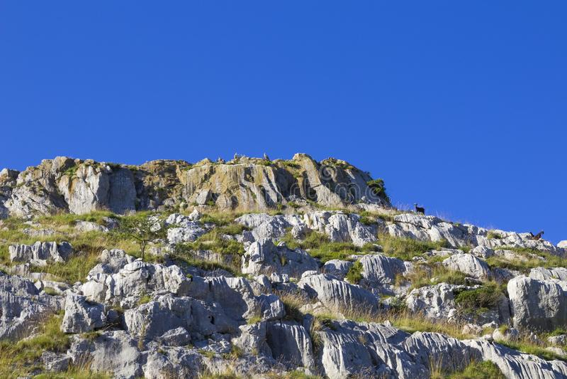 Comune di Cantabria, Liendo fotografie stock