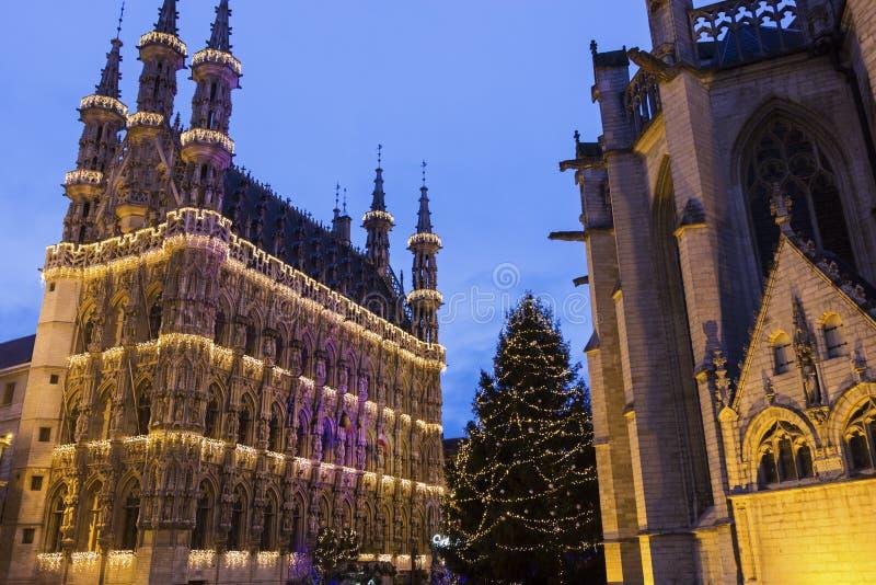 Comune di Lovanio e la chiesa di St Peter nel Belgio fotografie stock