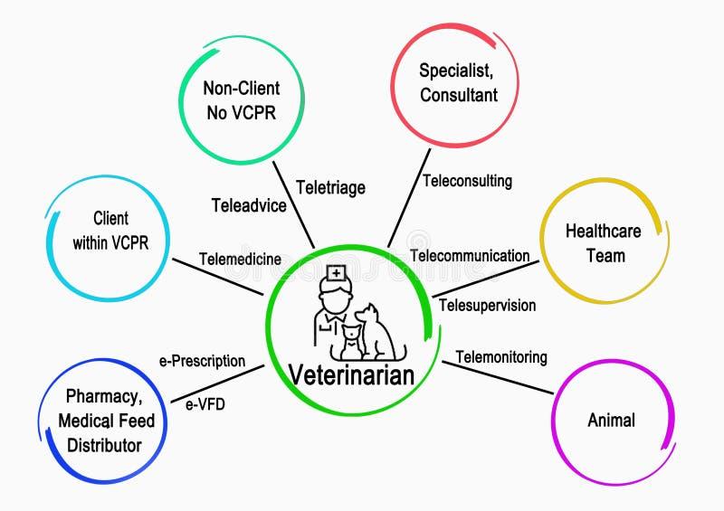 Comunicações do veterinário With outros serviços ilustração stock