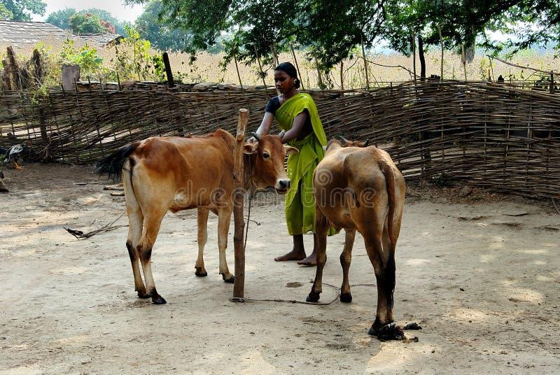 A comunidade tribal em Bastar imagens de stock royalty free