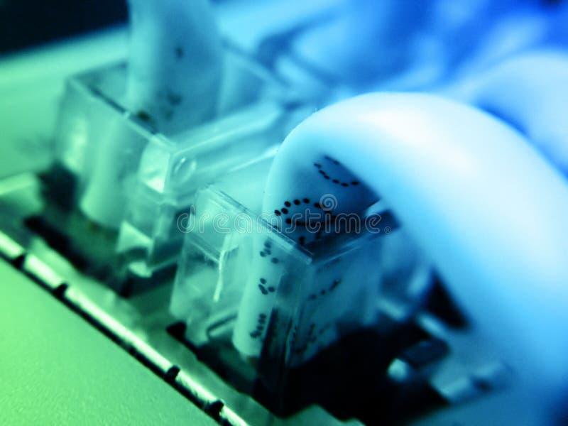 con δίκτυο στοκ φωτογραφία