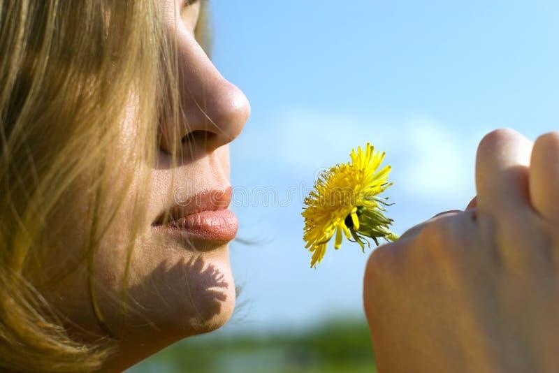 Con un fiore immagini stock