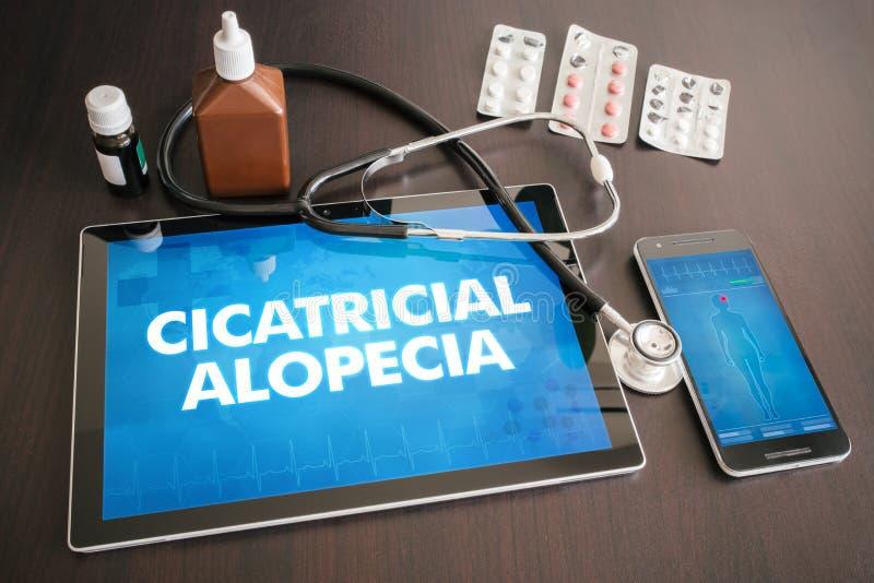Conce médico do diagnóstico cicatricial da calvície (doença cutâneo) foto de stock