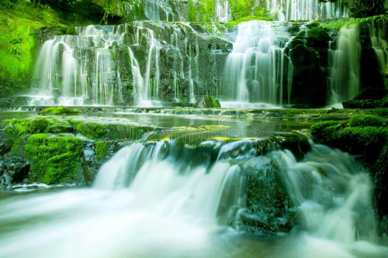 Conceito bonito de conexão em cascata da natureza das hortaliças da cachoeira fotos de stock
