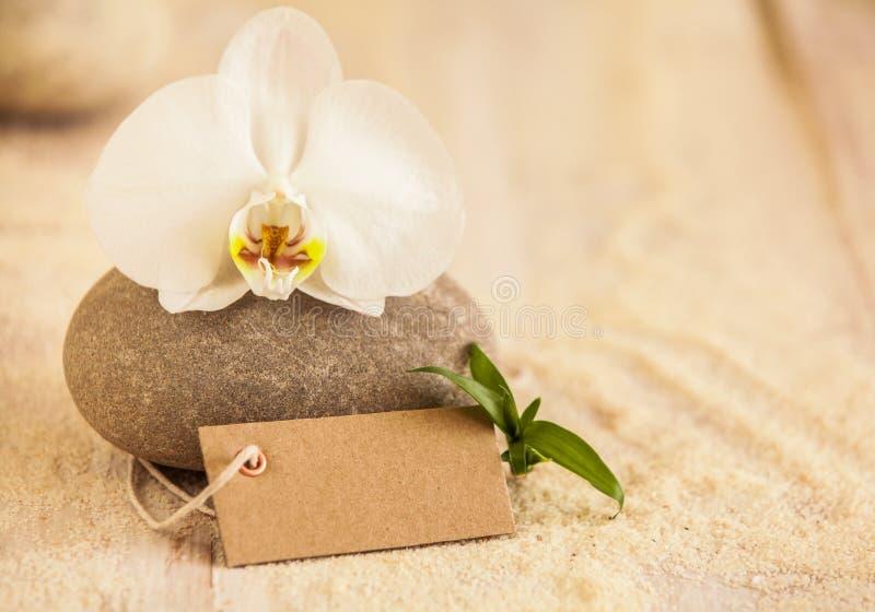 Conceito bonito dos termas com uma orquídea do phalaenopsis fotografia de stock
