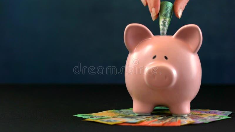 Conceito cor-de-rosa do dinheiro de mealheiro na obscuridade - fundo azul fotos de stock royalty free