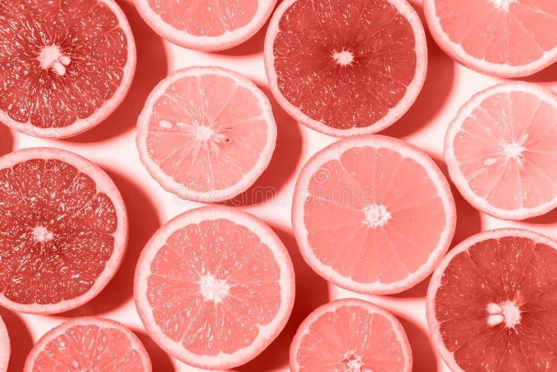 Conceito cortado sortido dos frutos Coral Color Background imagem de stock royalty free