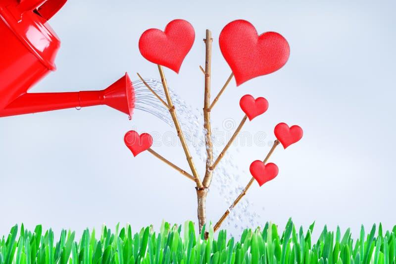 Conceito crescente do amor e do relacionamento entre o homem e a mulher e as crian?as Fam?lia imagem de stock
