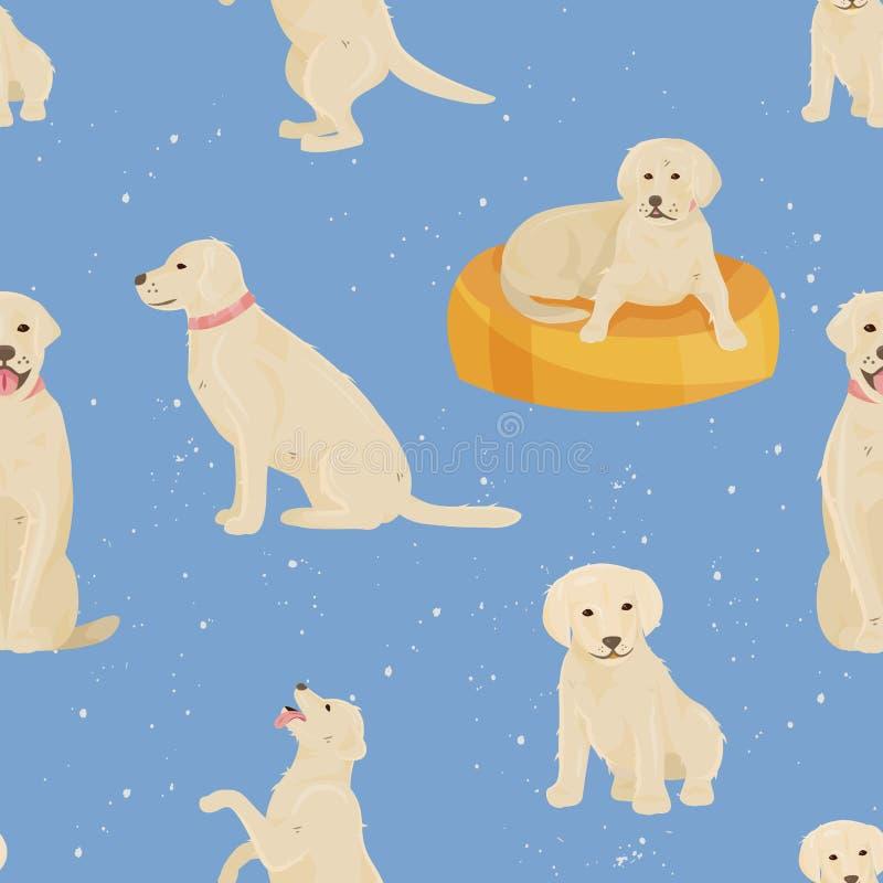 Conceito crescente e de envelhecimento do cão do vetor do crescimento da criança do bebê ou do cachorrinho ao homem envelhecido o ilustração do vetor