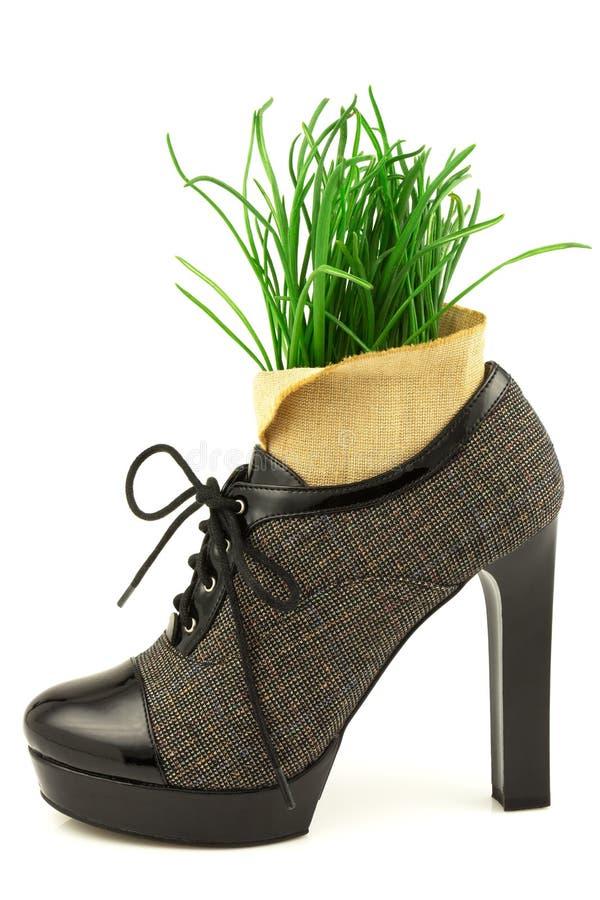 Conceito criativo da mola com grama e a bota frescas com salto alto fotos de stock